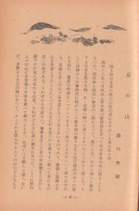rakumi-yukawa